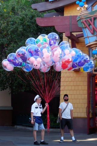 dscn3463-balloons-for-wordpress-2016-08-31